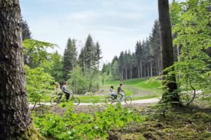 Center Parc les 3 forêts : nous avons testé pour vous