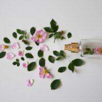 Le flacon de parfum vide = jusqu'à -20% de réduction